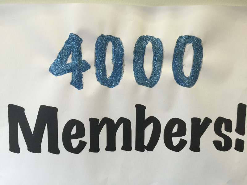 4000 mems